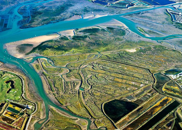 Réserve naturelle de Lilleau des Niges (crédits Yann Werdefroy)