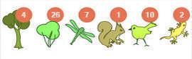 Liste des pictogrammes des espèces de la balade