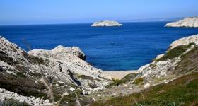 Sortie nature aux îles du Frioul