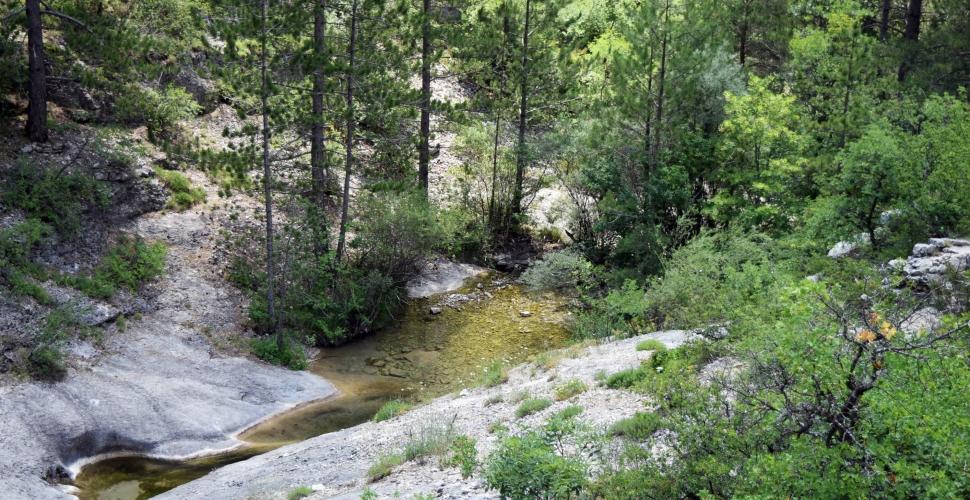 En randonnée au Buëch