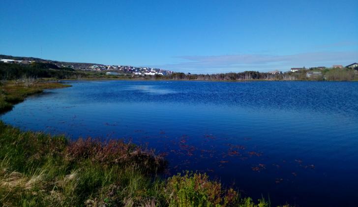 Etang du Milieu. Crédits : Saint-Pierre-et-Miquelon