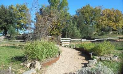 Sentier des plantes aromatiques - (Crédits : Parc d'Aoubré)