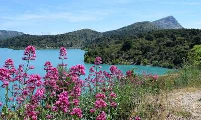 Lac de Bimont et Montagne Sainte-Victoire (Crédits : Léa Charbonnier)