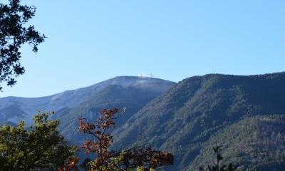 Vue du Mont Ventoux depuis le sentier (Crédit : Sabine Meneut)