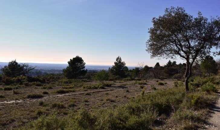 EcoBalade de St Cannat - Panorama (Crédits : Sabine Meneut)