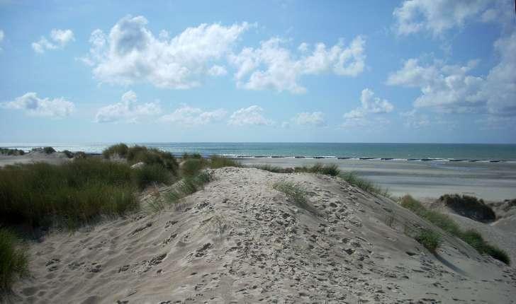 Sentier d'accès à la mer (Crédits: Stéphanie Ritz)