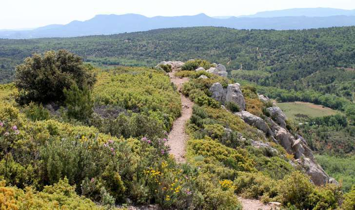 Sentier de l'oppidum - Balade Montagne Sainte-Victoire (Crédits : Léa Charbonnier)