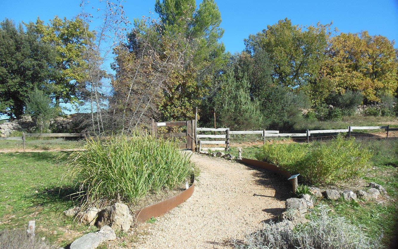 Sentier des plantes aromatiques - (Crédits : Parc d