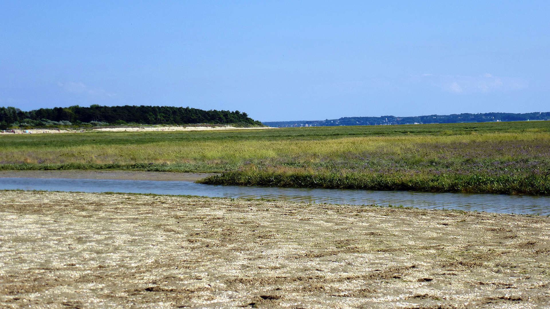 Baie de Somme - La Maye (Crédits: Stéphanie Ritz)