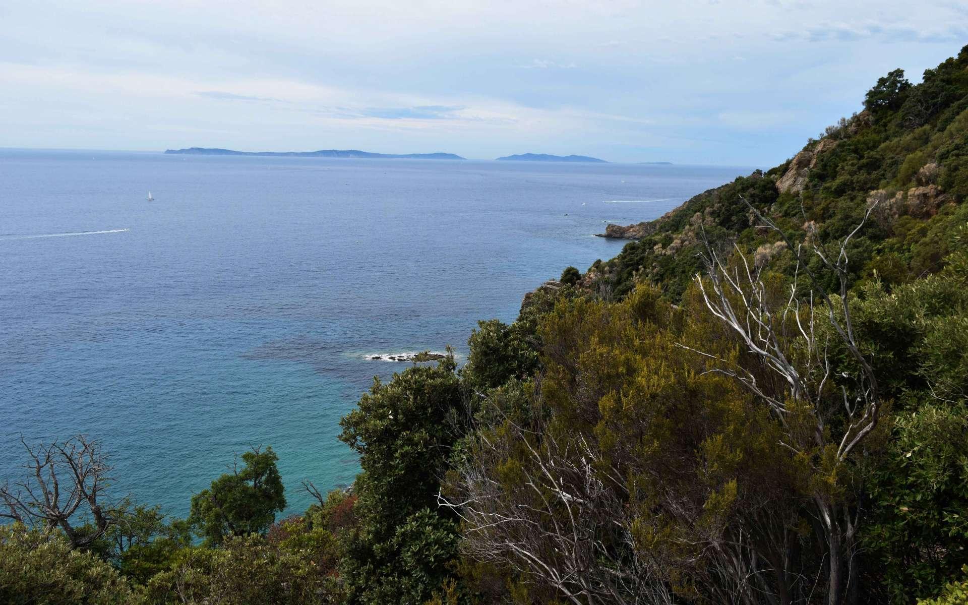 Point de vue depuis le sentier de Fenouillère (Crédits : Sabine Meneut)
