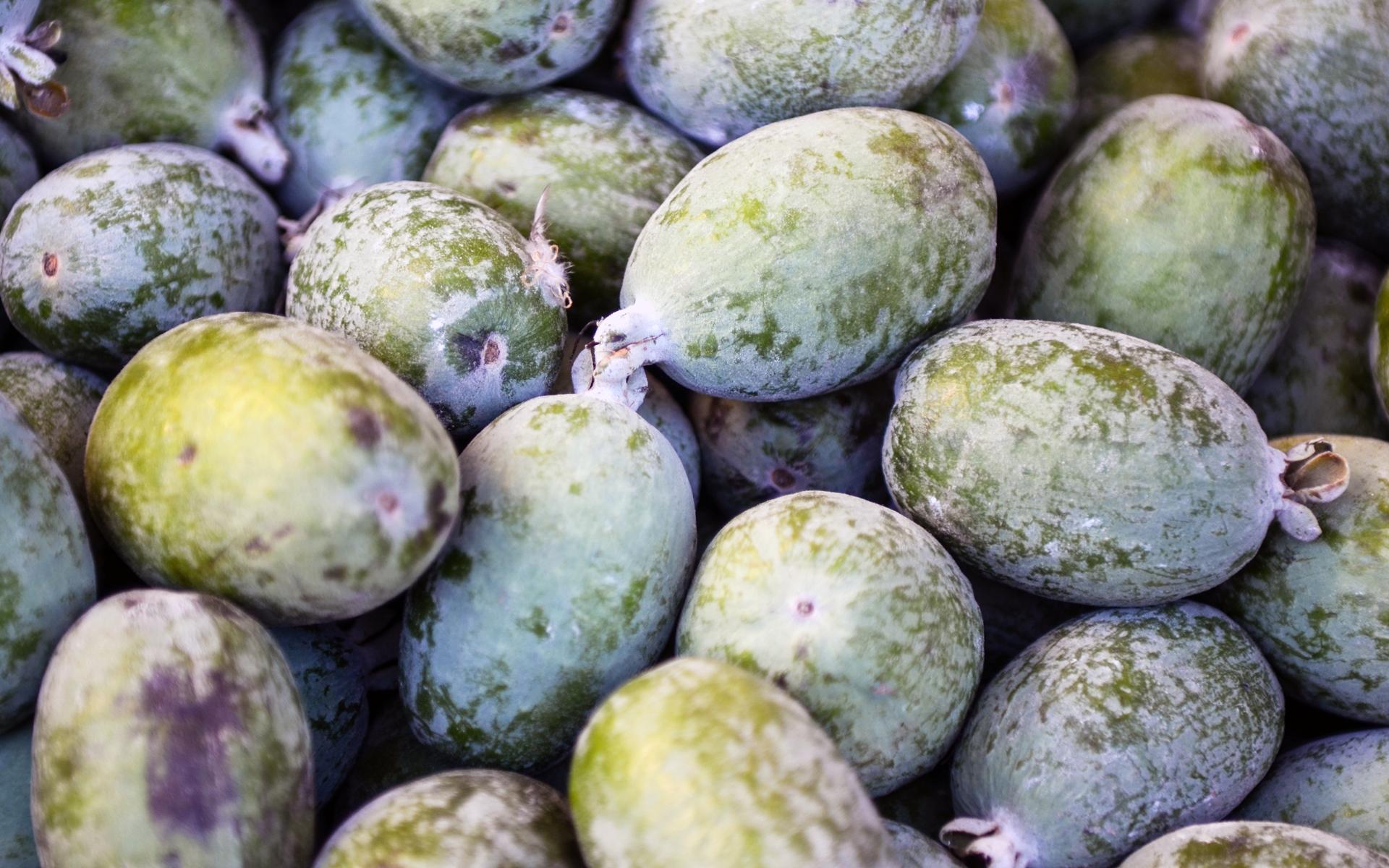 Fruits du goyavier de Montevideo. Crédits : Franco Folini - Flickr