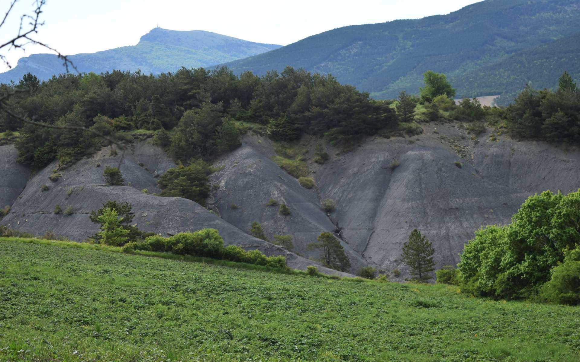 Marne bleue alternée avec du grès - balade de l'Epine (Crédits : Sabine Meneut)