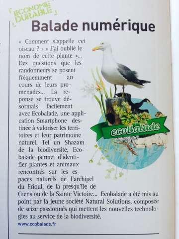 Magazine de la CCI marseille Provence