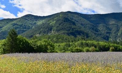 Vallée du Toulourenc (crédits Natural Solutions)