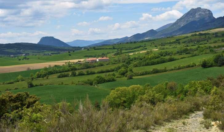 Balade de l'Epine - Pays du Buëch - entre Sisteron et Serre-Ponçon (Crédits : Sabine Meneut)