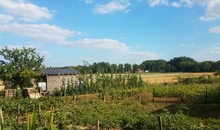 Jardins partagés de l'écoquartier des Brichères
