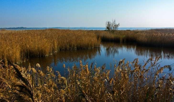 Site naturel du Méjean (Crédits : Cyril Gautreau)
