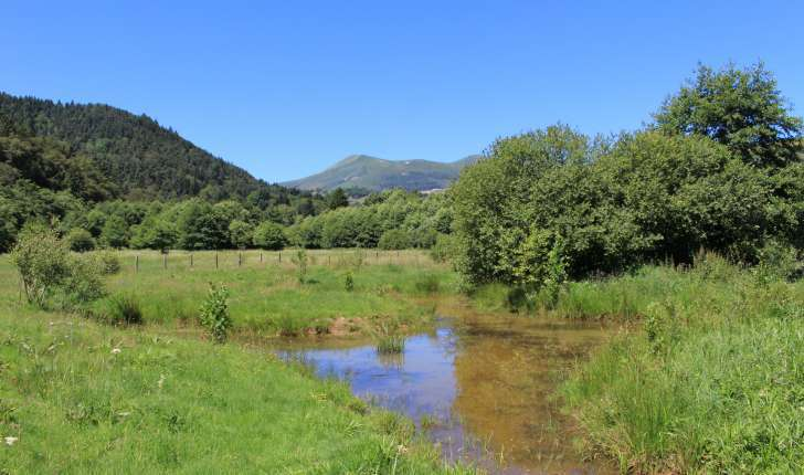 Frayère à poisson et les Monts Dore (Crédits: Thibault Rudel - Natural Solutions)
