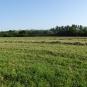 Balade de Méry-sur-Cher - crédit Sologne Nature Environnement