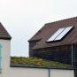 Comme ici, de nombreux toits ont été végétalisés dans l'écoquartier des Brichères.