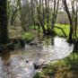 L'Arboretum de Carnivet-Quessoy