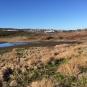 Vue sur le marais du Milieu. Crédits : MNESPM